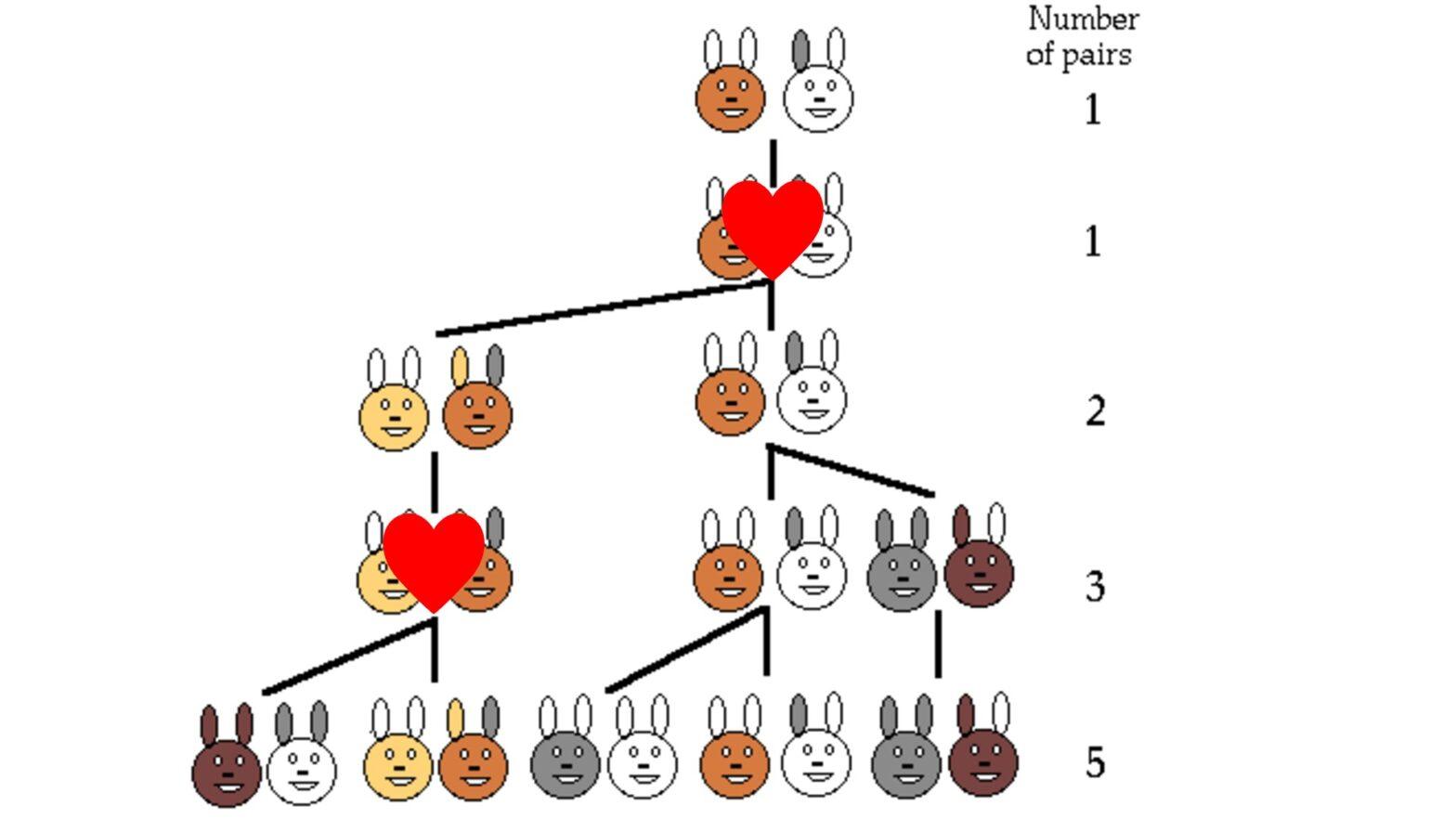 Problem of Rabbits.